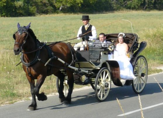 location de calche pour votre mariage mariagetv - Mariage En Caleche